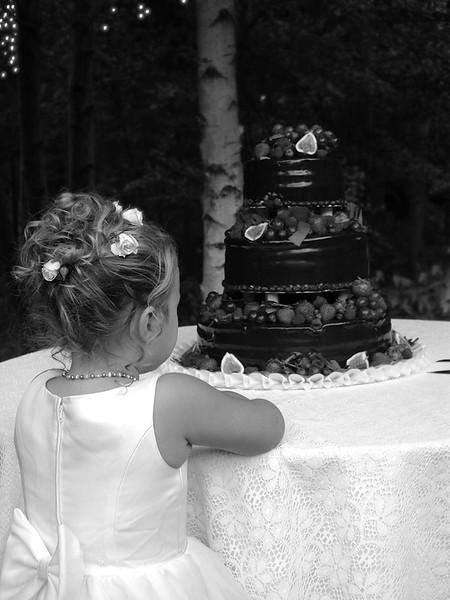 Wedding cake envy
