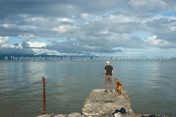 Patience shown by man and dog standing on old pier on Firth of Thames fishing New Zealand