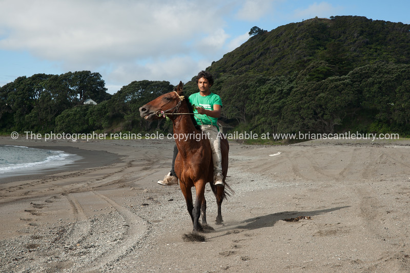 """Horses are a way of life on New Zealand's East Coast.<br /> Rihari O'Brien shows his horse off on Te Kaha Beach.<br /> Model Release; Yes.<br /> MORE EAST COAST IMAGES; <a href=""""http://smu.gs/YlrayJ"""">http://smu.gs/YlrayJ</a> edit"""