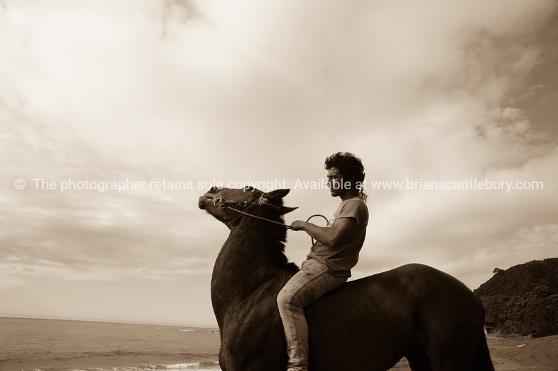 """Horses are a way of life on New Zealand's East Coast.<br /> Rihari O'Brien shows his horse off on Te Kaha Beach.<br /> Model Release; Yes.<br /> MORE EAST COAST IMAGES; <a href=""""http://smu.gs/YlrayJ"""">http://smu.gs/YlrayJ</a>"""