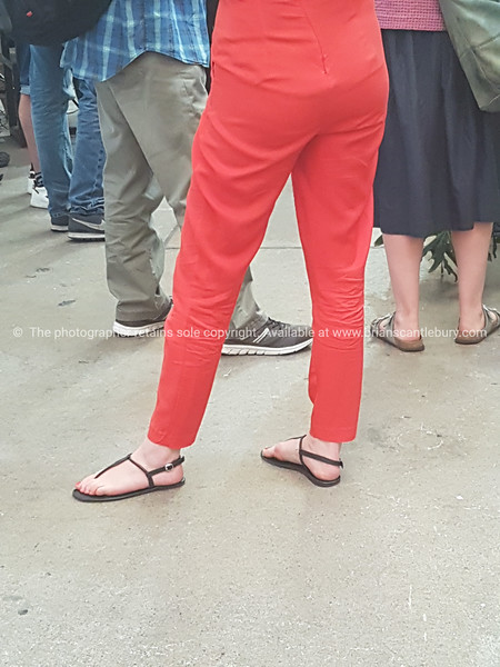 Legs in red
