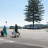 """Couple walk their dogs on the street at base of Mount Maunganui, New Zealand.<br /> <br /> Model Release; No. See;  <a href=""""http://www.blurb.com/b/3811392-tauranga"""">http://www.blurb.com/b/3811392-tauranga</a> or try keyworing people in the search tool above"""