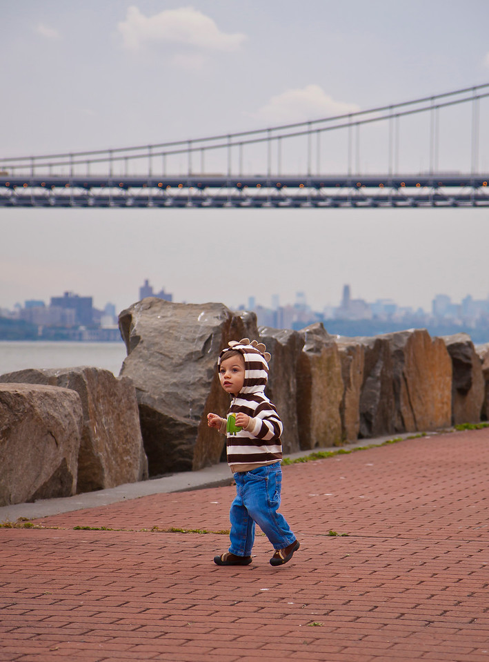 Looking at the seagulls flying by with the GWB and Manhattan in the background.  Englewood Cliffs, NJ