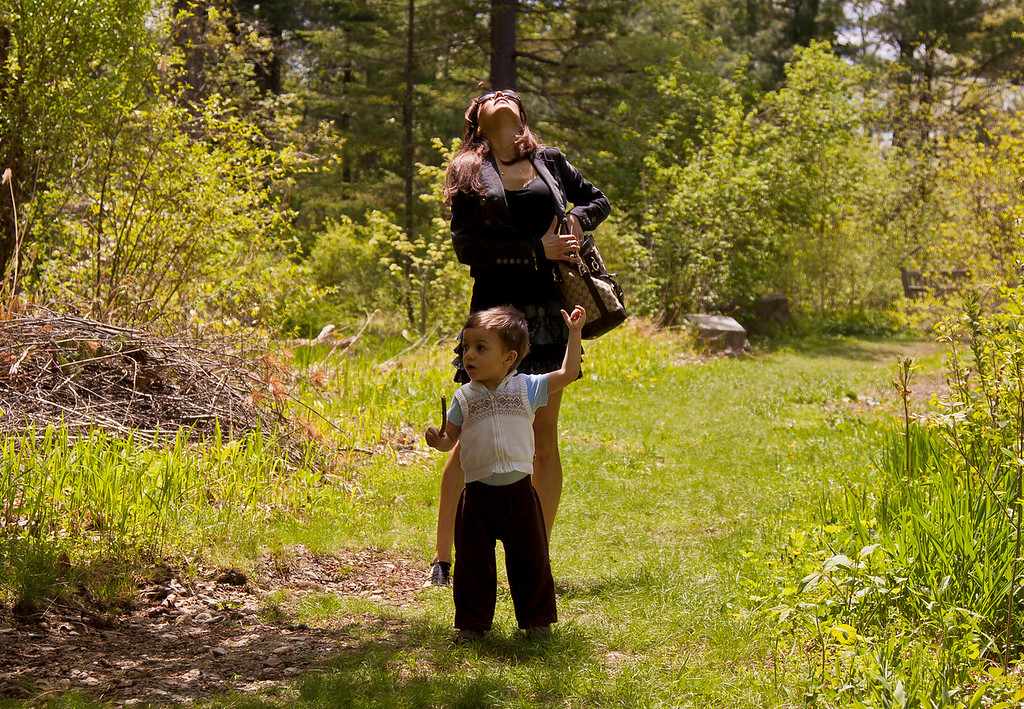 Mommy and baby check out some birds, NJ Botanical Gardens