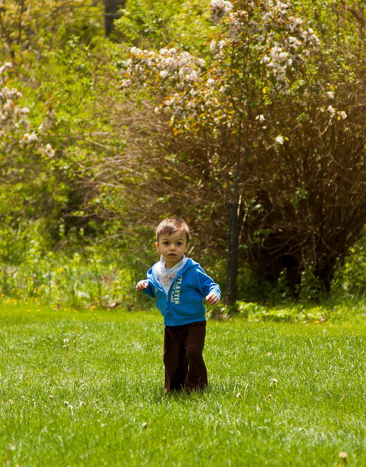 Julian explores the grass, NJ Botanical Gardens