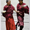 mybioscope > Juvenile monks in a playful mood