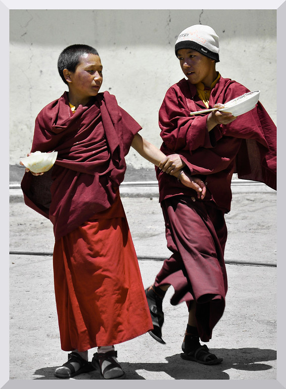 Juvenile monks in a playful mood