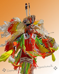 In the Dance ~ This dancing boy was at the Morongo Pow Wow.  I liked the way his elaborate regalia was swirling around him as he danced.