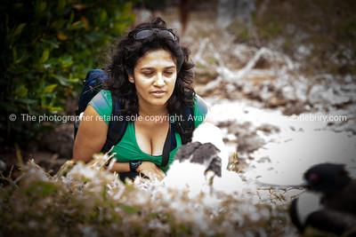 Fiorella getting up close to Frigate bird nesting.          www.blurb.com/b/3551540-galapagos-islands