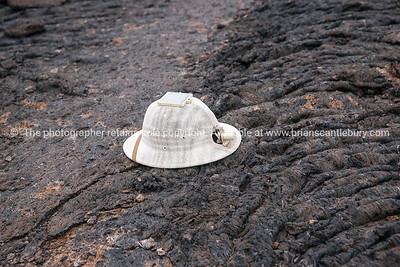 Fabians modified pith helmet.          www.blurb.com/b/3551540-galapagos-islands