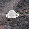 """Fabians modified pith helmet.           <a href=""""http://www.blurb.com/b/3551540-galapagos-islands"""">http://www.blurb.com/b/3551540-galapagos-islands</a>"""