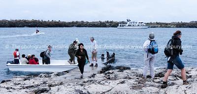 Landing, Fiorella in the lead.          www.blurb.com/b/3551540-galapagos-islands