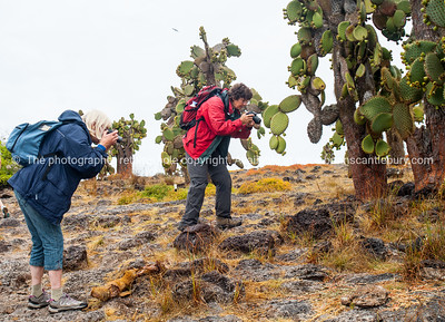 Getting those close shots.          www.blurb.com/b/3551540-galapagos-islands