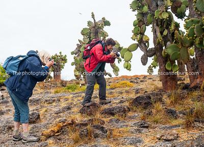 Getting those close shots.          www.blurb.com/b/3551540-galapagos-islands