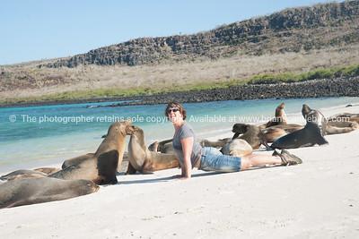 Seal lion like!          www.blurb.com/b/3551540-galapagos-islands