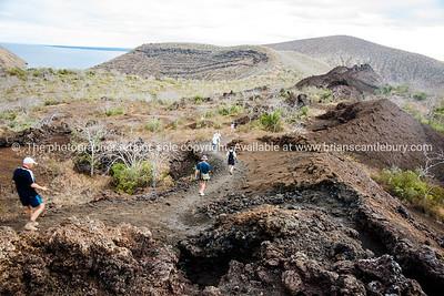Downhill walk.          www.blurb.com/b/3551540-galapagos-islands