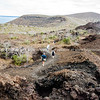 """Downhill walk.           <a href=""""http://www.blurb.com/b/3551540-galapagos-islands"""">http://www.blurb.com/b/3551540-galapagos-islands</a>"""