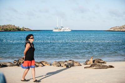Galapagos-Santa Fe-4258-2
