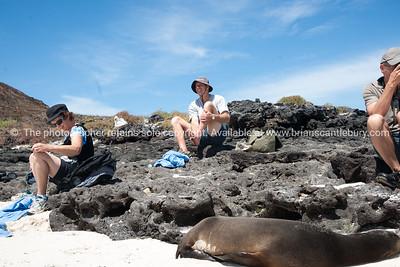 Graham, readying for a walk.          www.blurb.com/b/3551540-galapagos-islands