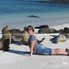 """Being a sea lion.           <a href=""""http://www.blurb.com/b/3551540-galapagos-islands"""">http://www.blurb.com/b/3551540-galapagos-islands</a>"""