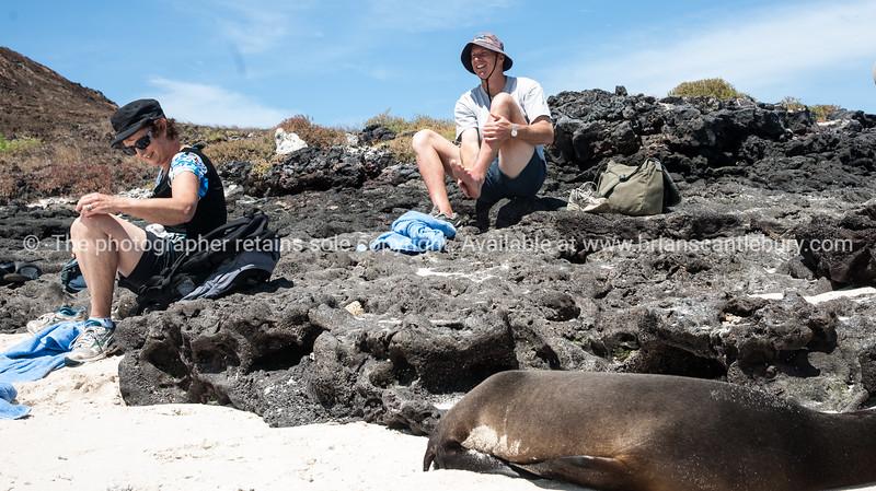 "Graham, getting ready to re-shoe.           <a href=""http://www.blurb.com/b/3551540-galapagos-islands"">http://www.blurb.com/b/3551540-galapagos-islands</a>"