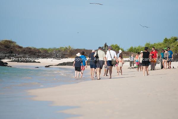"""On a walk, Santa Cruz.           <a href=""""http://www.blurb.com/b/3551540-galapagos-islands"""">http://www.blurb.com/b/3551540-galapagos-islands</a>"""