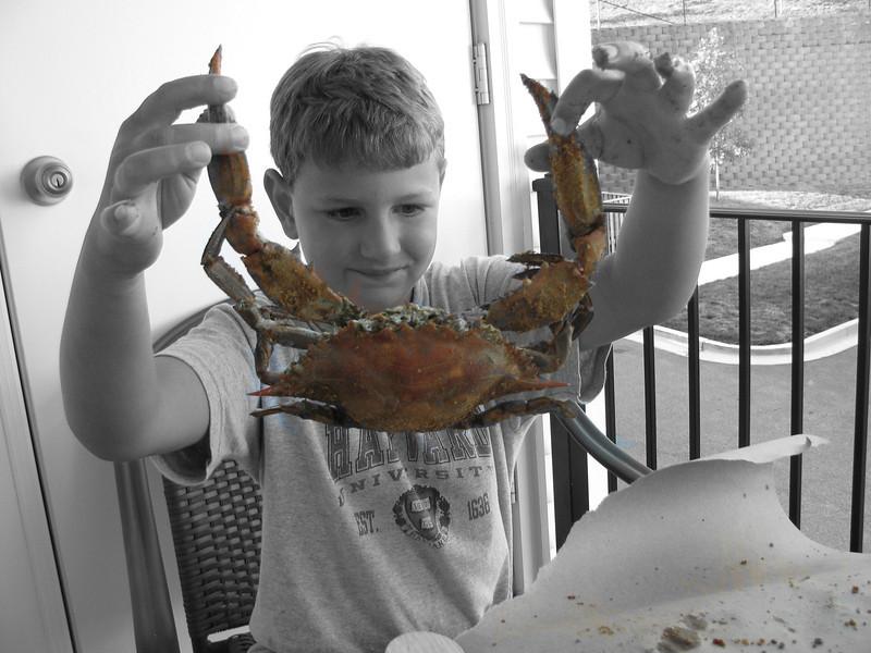 Crabs! Aug 2010
