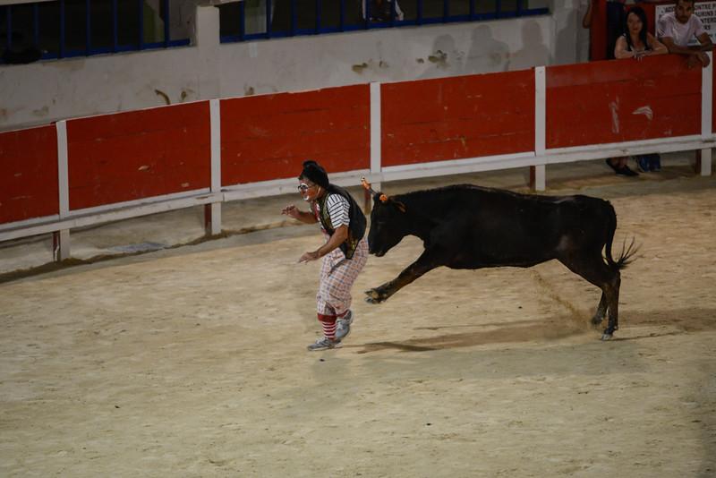 Toro Piscine - Grau du Roi