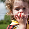 Child jams strawberry in mouth. Closeup.<br /> Model Release: yes.