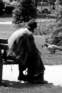 Homeless fellow watching goose