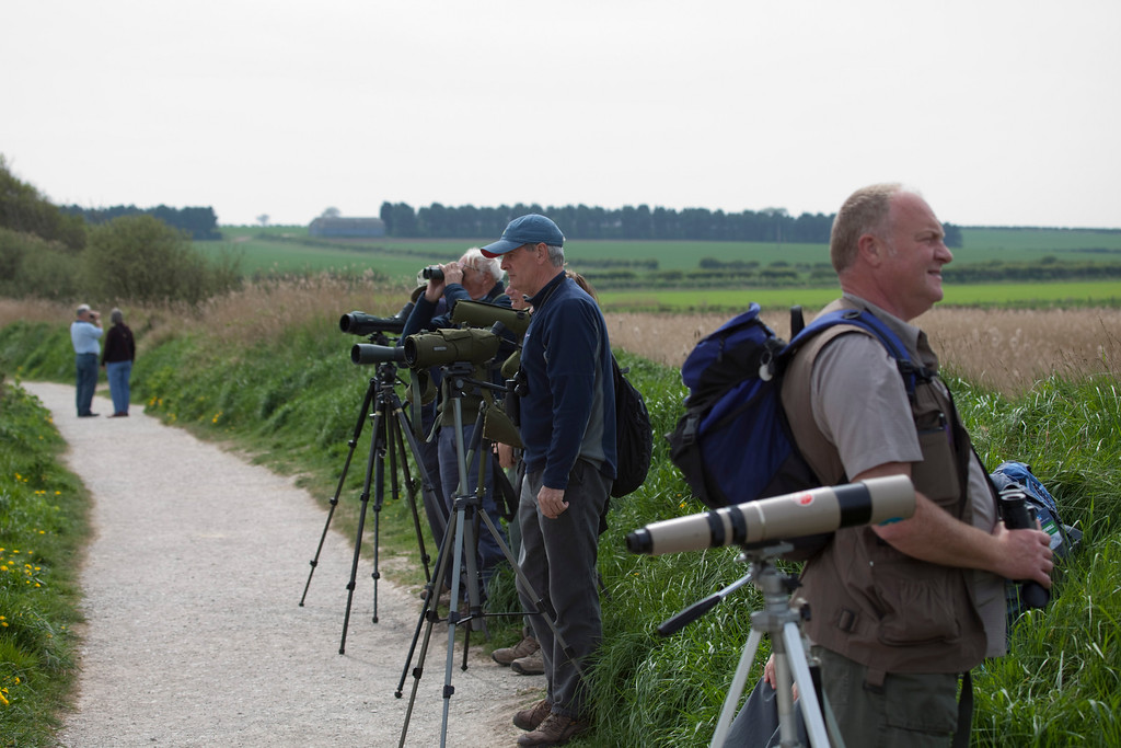 """""""twitchers"""" waiting for 3 cranes to fly over"""