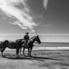 """Horses are a way of life on New Zealand's East Coast.<br /> Rider stops and helpfully presents his horses for the camera. Thank you.<br /> Model Release; No.<br /> MORE EAST COAST IMAGES; <a href=""""http://smu.gs/YlrayJ"""">http://smu.gs/YlrayJ</a> edit"""