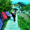 Longjitian_2011 04 26_4490702