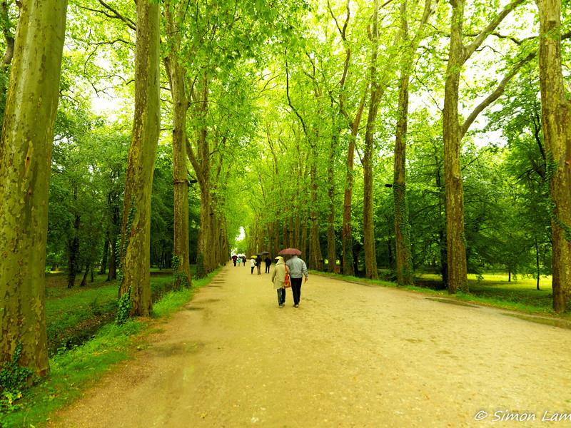 Chenonceaux_2012 06_4493939