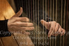 Fingers of Harpist - Vanderbilt Mansion - Copyright 2014 Steve Leimberg - UnSeenImages Com _H1R2998