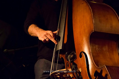 Simon Starr on bass, part of the Omri Mor Trio during the Melbourne International Jazz Festival 2013.