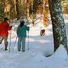 Two women and their dog cross country skiing through Harvard Pond forest in Petersham, Ma.
