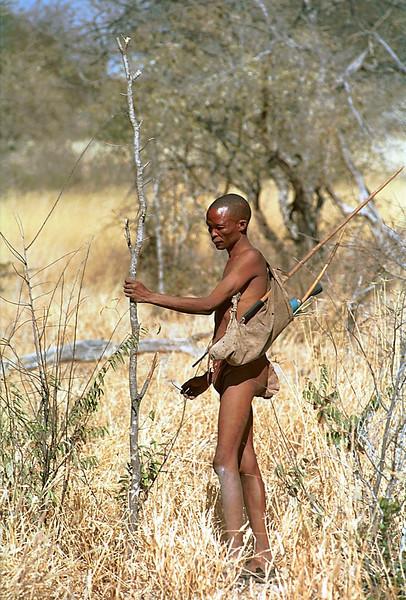 San Bushman, Namibia