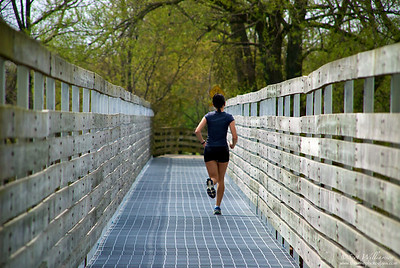 Bridge Runner