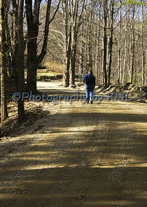 Country Road Walk