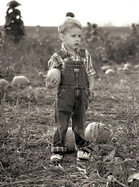 Pint Size Farmer