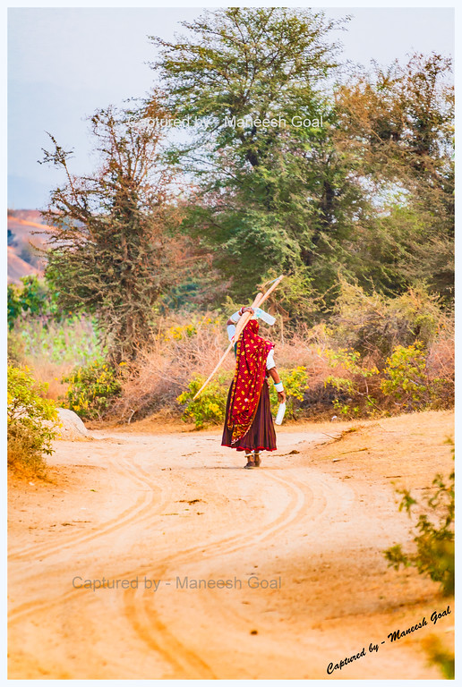 Long walk back | Bera, Rajasthan