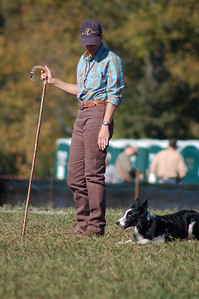 Rural Hills Sheepdog trials, Huntersville North Carolina