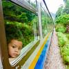 Jungle Train - Kuala Lipis - Malaysia
