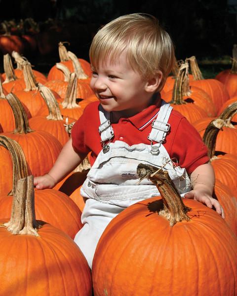 Climbing on the pumpkins