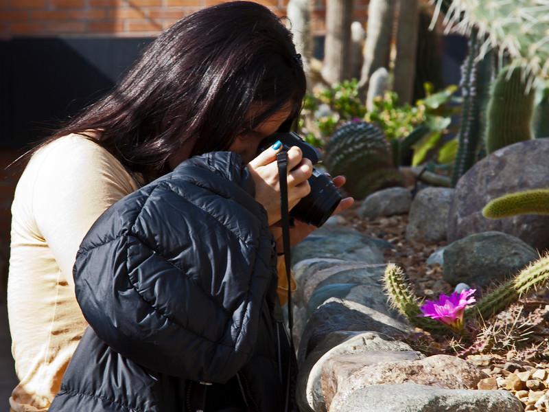 Capturing a cactus bloom