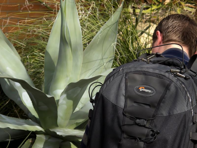 Serious photographer.<br /> <br /> Matthaei Botanical Gardens Conservatory, Arid House.<br /> Ann Arbor, Michigan