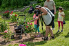 Photographers in the Peony Garden<br /> <br /> Peony Garden at Nichols Arboretum<br /> Ann Arbor, Michigan<br /> Heirloom peonies<br /> Taken June 8, 2019