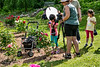 Photographers in the Peony Garden<br /> <br /> Peony Garden at Nichols Arboretum<br /> Ann Arbor, Michigan<br /> Heirloom peonies<br /> Taken June 8, 2019