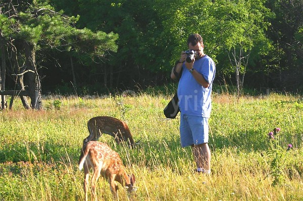 Me taking pics of the Fawns at Big Meadows - 11/6/06